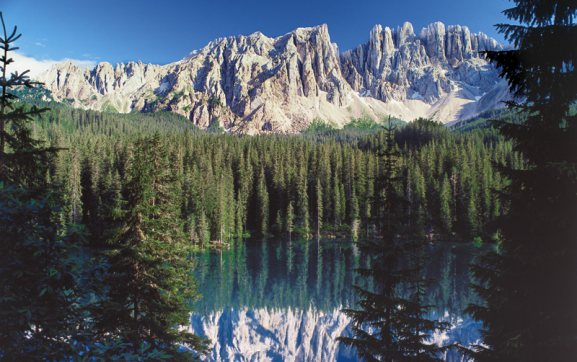 The flora and fauna of the Dolomites